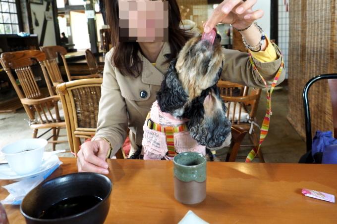 blog_PA059276.jpg