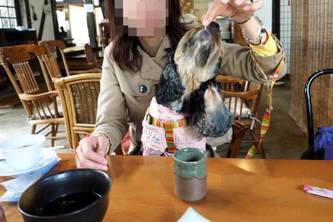 blog_PA059277.jpg