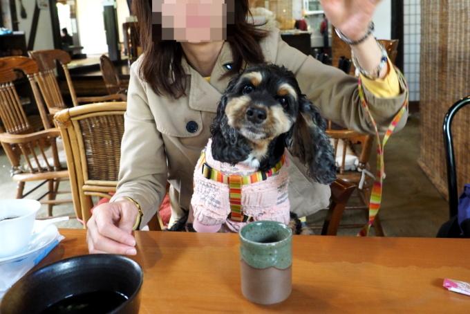 blog_PA059281.jpg