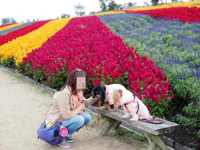 blog_PA059410.jpg
