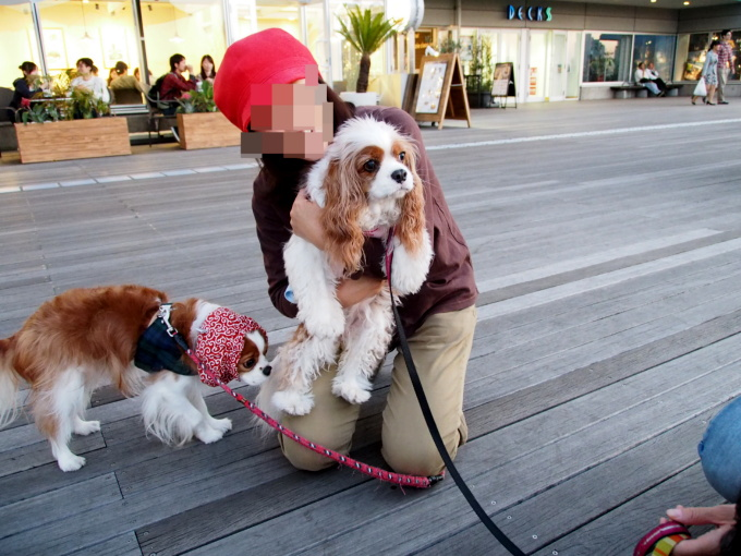 blog_PA180337.jpg