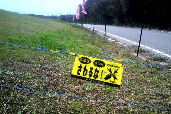 20151029_saku.jpg