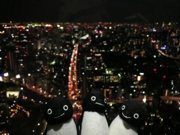 20151031-TOKYO TOWER (5)-加工