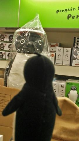 20151122-ICOCA ペンギンさんより (5)-加工