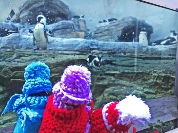 20151128-サンシャイン水族館 (54)-加工
