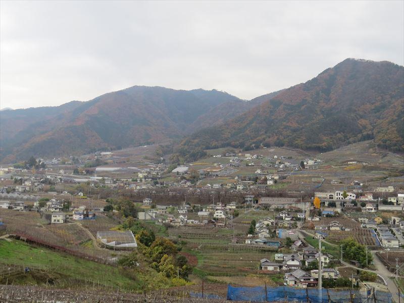 20151201028_R.jpg