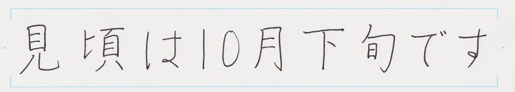国_20151027_清書