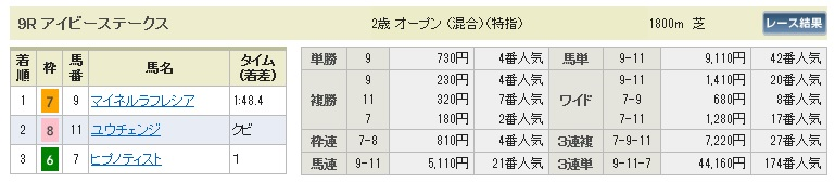【払戻金】1024東京9(競馬 3連単 万馬券)