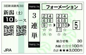 【馬券】1025新潟10(競馬 3連単 万馬券)