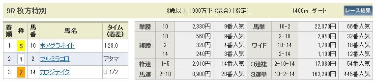 【払戻金】1114京都9(競馬 3連単 万馬券)