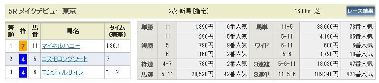 【払戻金】1115東京5(競馬 3連単 万馬券)