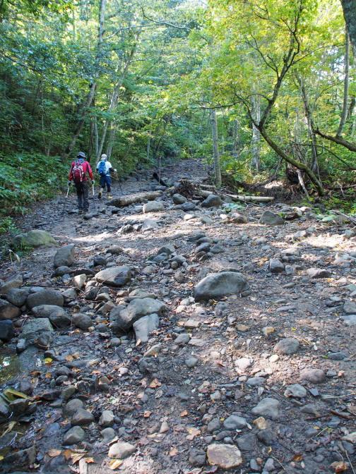 川原は昨年の氾濫により荒れている