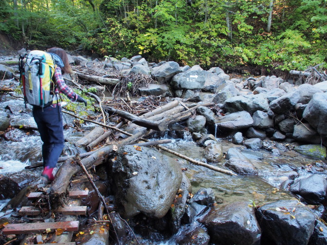 木を並べただけの橋。滑るので注意