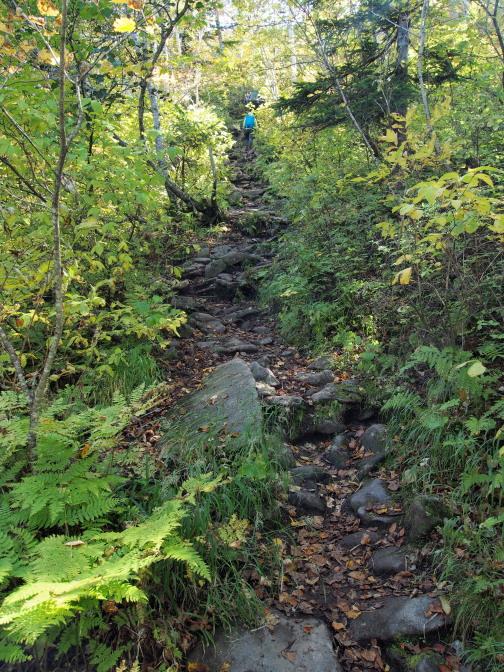 ゴロゴロとした岩に急な坂