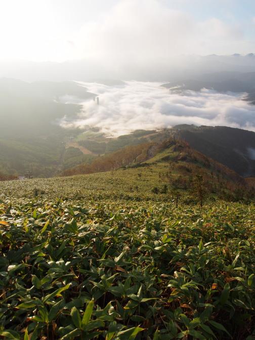 リゾナーレ・トマムの足元まで雲海が押し寄せる