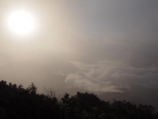 高く上がった朝日がタワーを照らし雲海に影を落とす