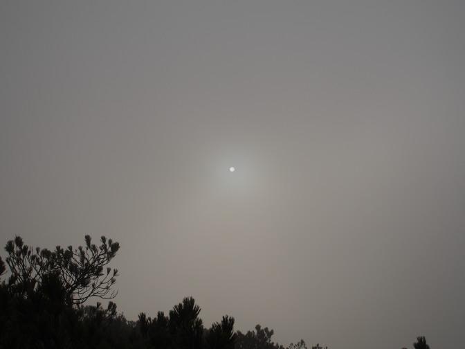 山頂付近は雲の中へ…