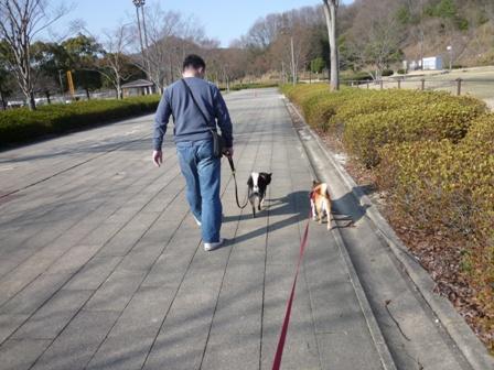 blog10665.jpg
