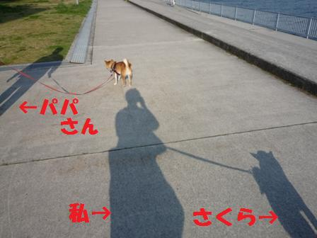 blog10720.jpg