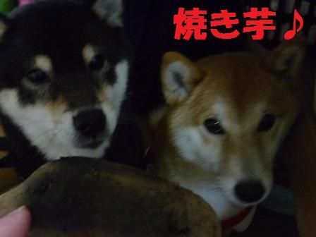 blog10722.jpg
