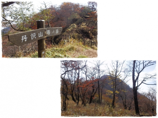 page塔ノ岳3