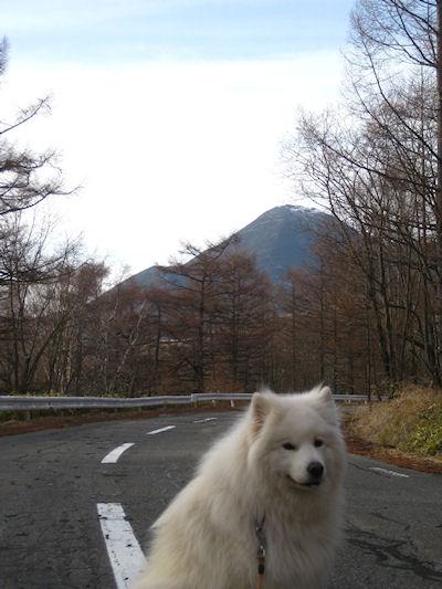 blog3346.jpg