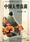 中国大型真菌10