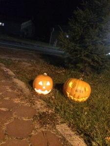かぼちゃふたつ