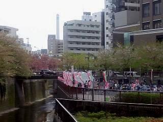 20150412目黒川(その37)