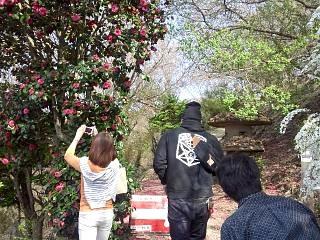 20150418花見山(その12)