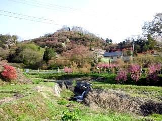 20150418花見山(その31)