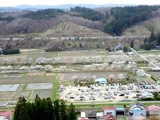 20150419夏井千本桜2(その7)