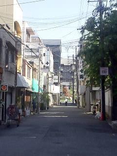 20150501白川散歩(その6)