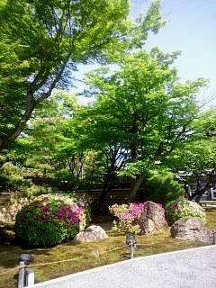 20150501高台寺(その1)