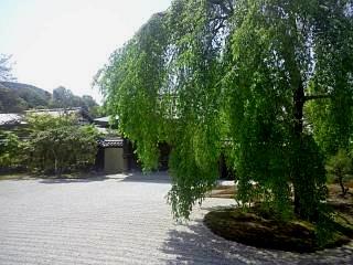 20150501高台寺(その8)