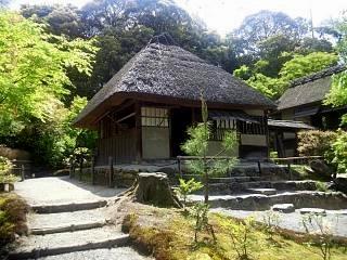 20150501高台寺(その22)