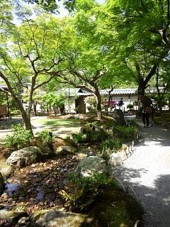 20150501高台寺(その26)