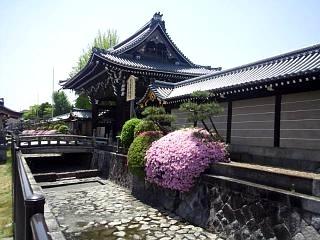20150501西本願寺(その3)