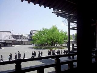 20150501西本願寺(その8)