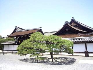 20150501西本願寺(その17)