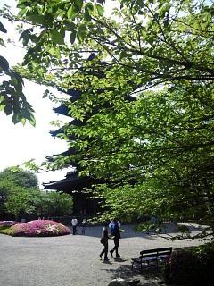 20150502東寺(その20)