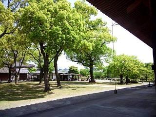 20150502東寺(その34)