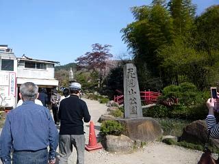 20150418花見山(その39)