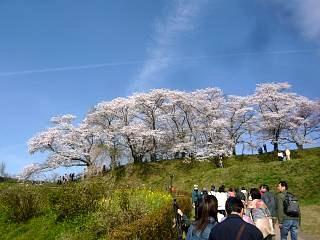 20150419三春滝桜(その37)