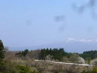 20150419三春滝桜(その50)