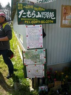 20150419三春滝桜(その72)