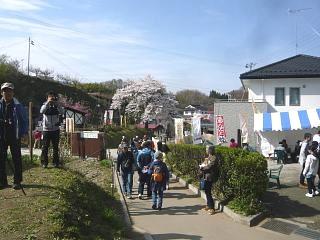20150419三春滝桜(その78)