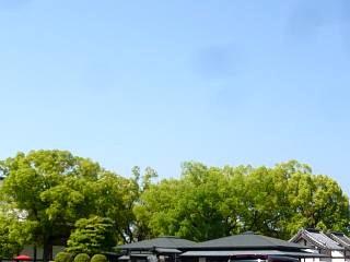 20150502東寺(その3)