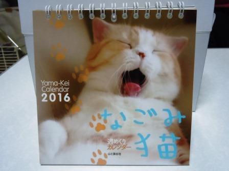 なごみ猫1(2015-10-28)