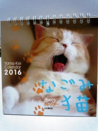 なごみ猫2(2015-10-28)